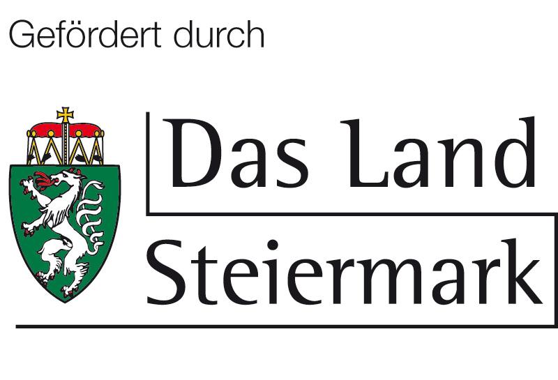 Logo Land Stmk